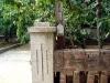 W ogrodzie (1)