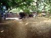 W ogrodzie (2)