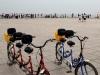 Rowerki, którymi jeździliśmy po Xinghai Square